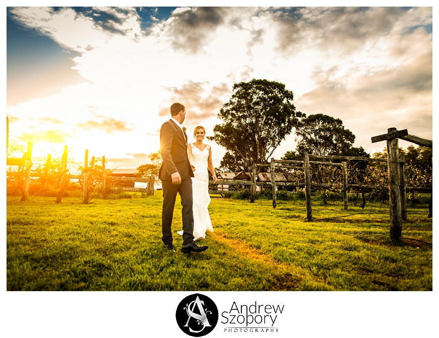 bride and groom walk through vineyards as sun sets at belgenny farm